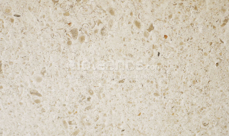 Moleanos limestone brushed