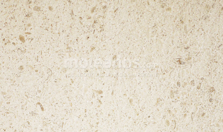 Moleanos limestone sandblasted + brushed